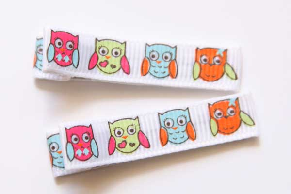 Hoot Hoot! Owl Clippies